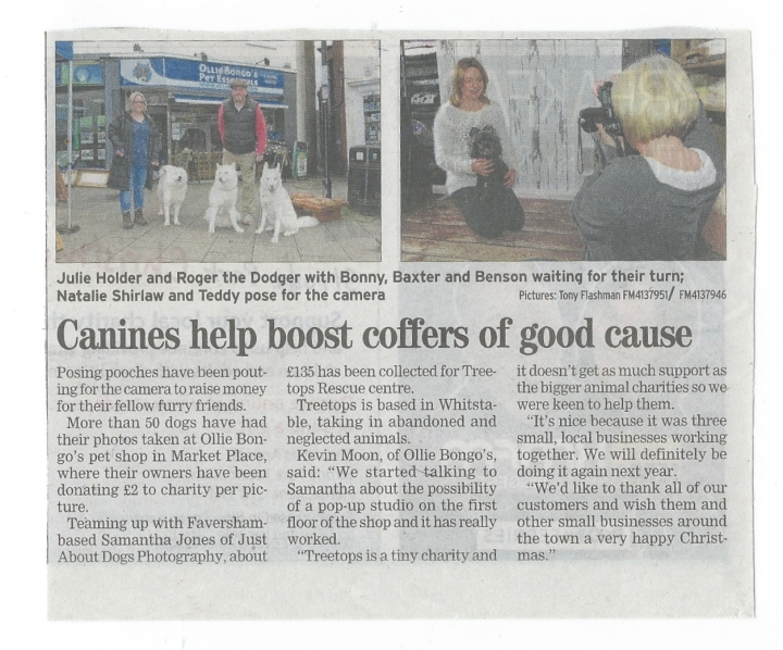 Just About Dogs at Ollie Bongo's newspaper article