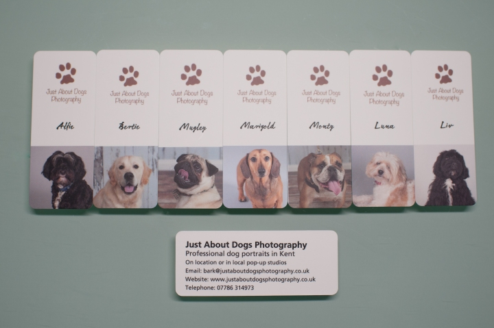 Just About Dogs Photography business cards