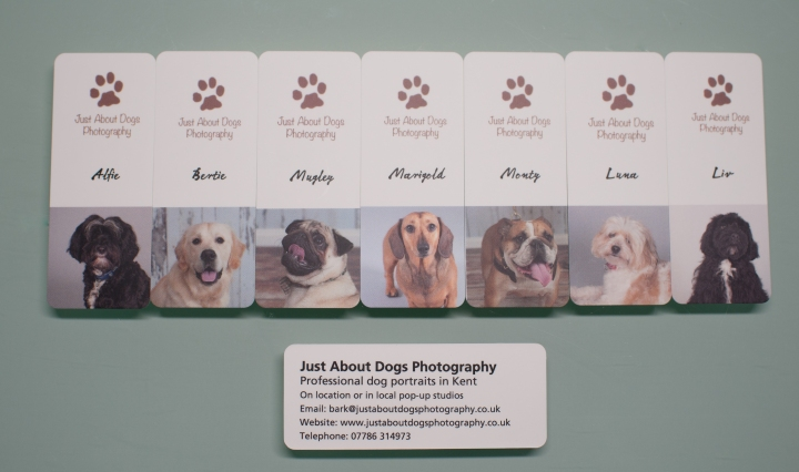 Just about dogs photography page 2 fabulous images of those you new business cards featuring some of my four legged clients reheart Image collections