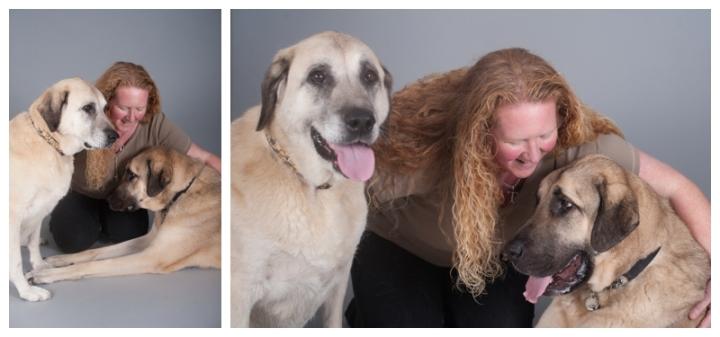 Kurt, Kara and Tracy - Anatolian Shepherd dogs by Just About Dogs Photography 01